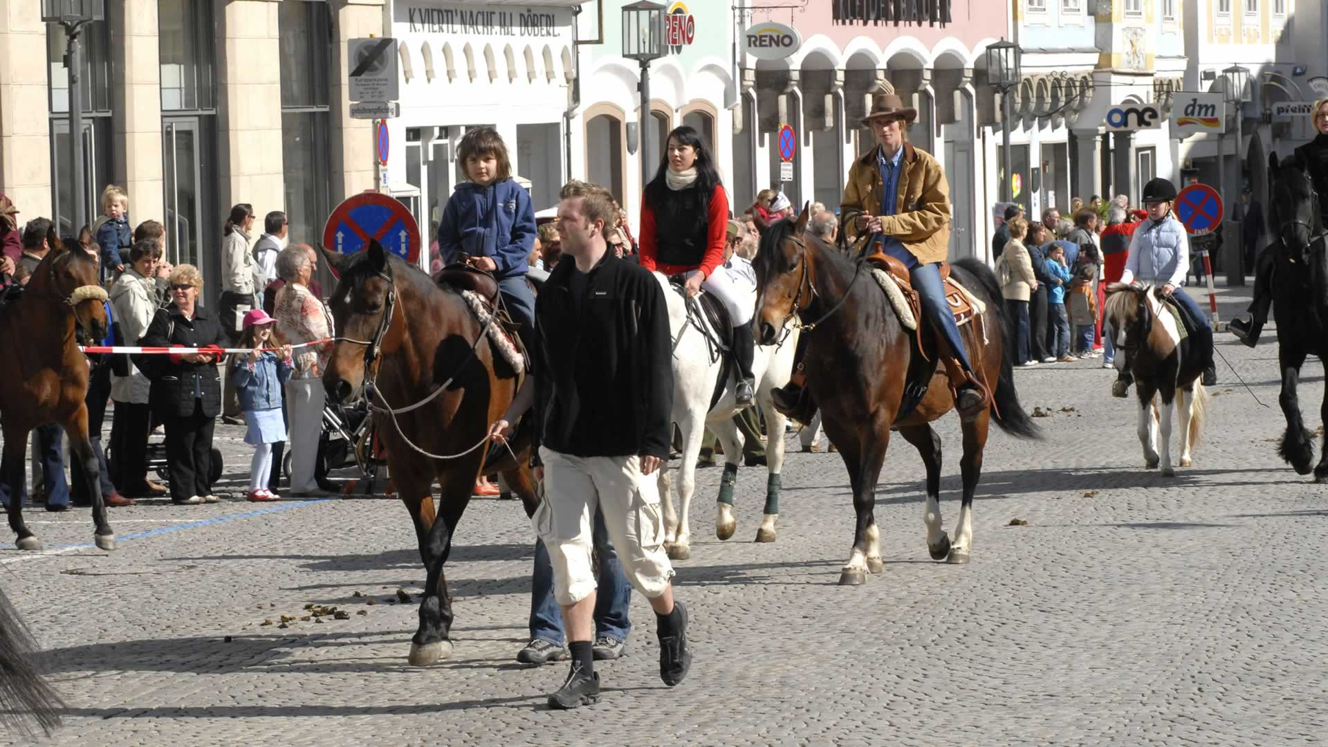 Pferde am Steyrer Stadtplatz